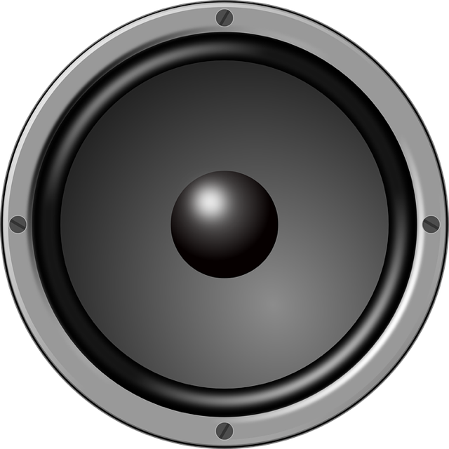 Pin By Romantic Suspense Reads On The Write Room Blog Audio Speakers Speaker Music Speakers