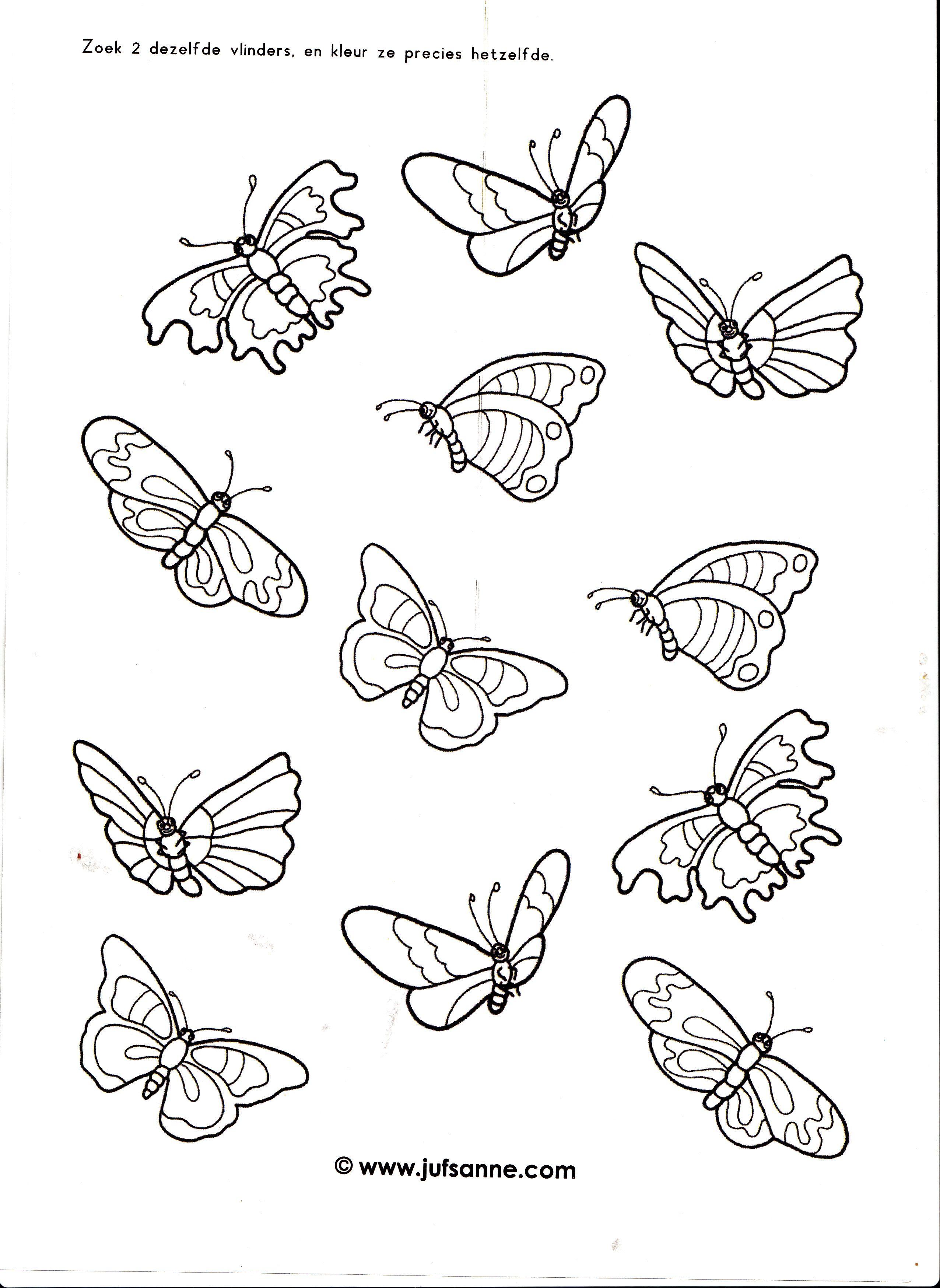 Werkblad Vlinders Insecten Thema