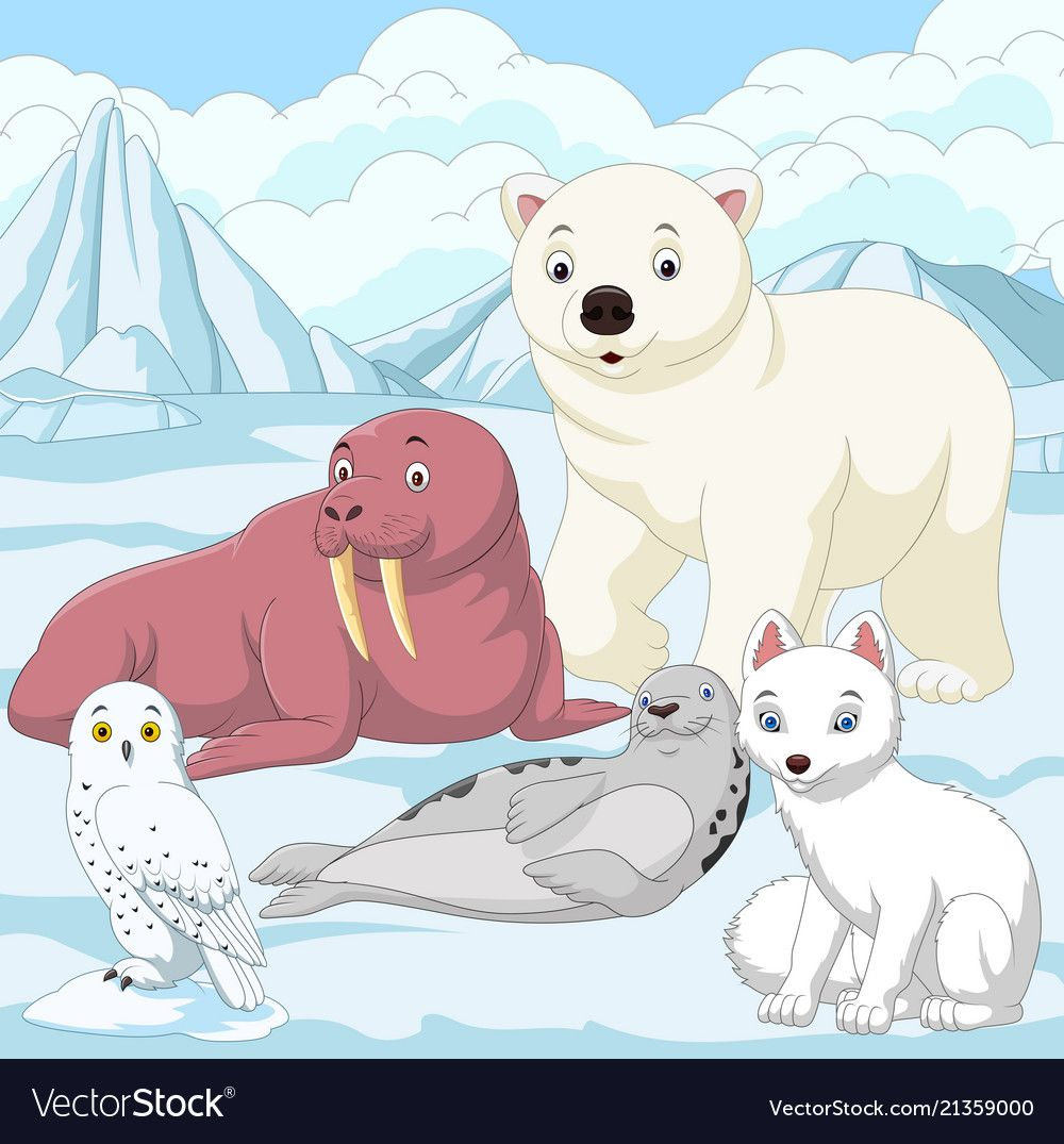 Cartoon Arctic Animals With Ice Field Background Download A Free Preview Or High Quality Adobe Illustrator Ai Eps Pdf An Arctic Animals Polar Animals Arctic
