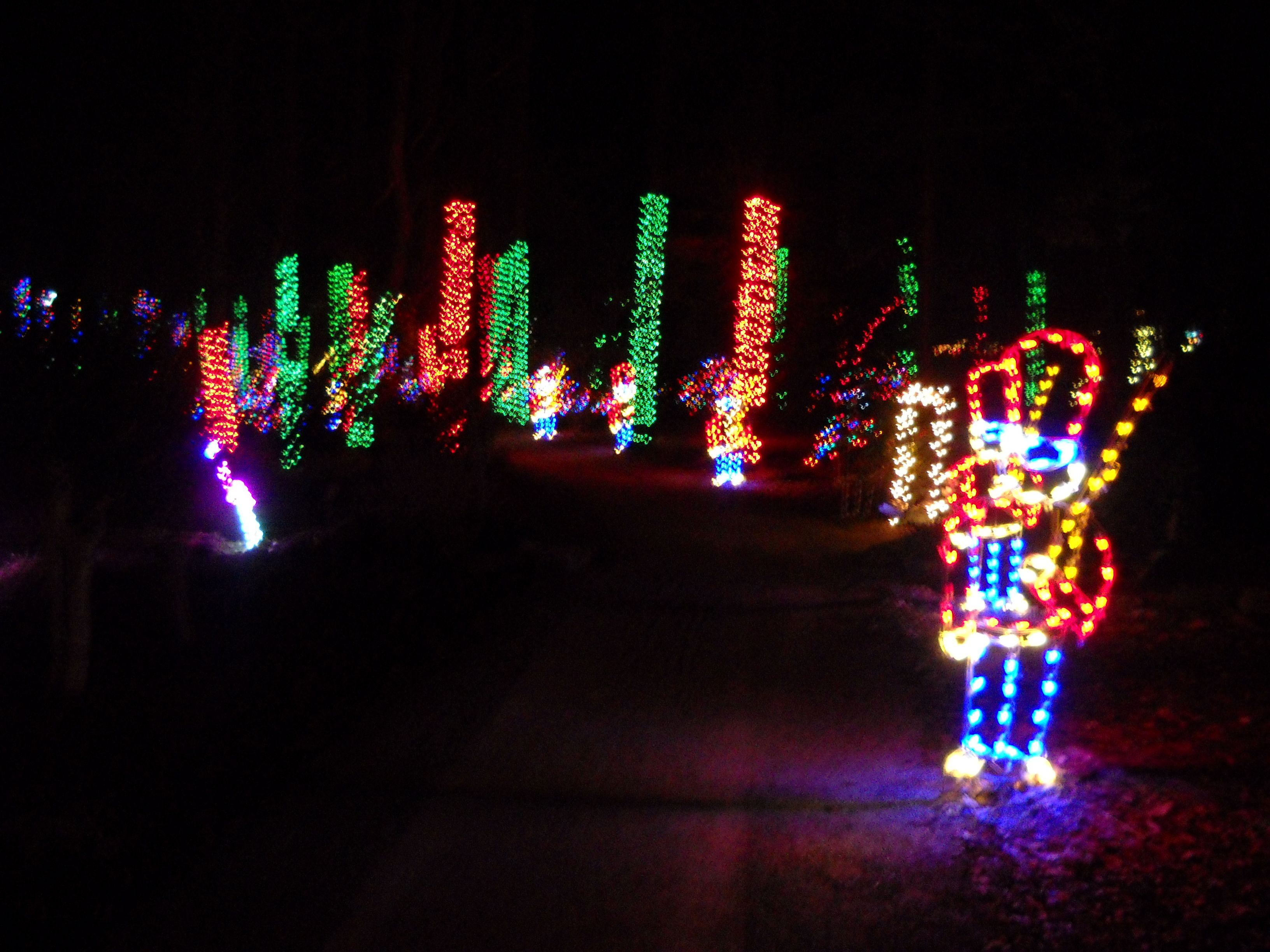 NEW NOCCALULA FALLS CHRISTMAS LIGHTS | Christmas Lights | Sweet Home ...