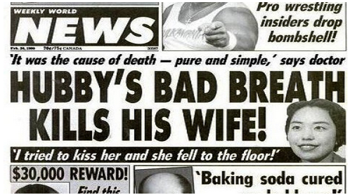 Funniest News Headlines Of All Time  Pictures Ha Ha