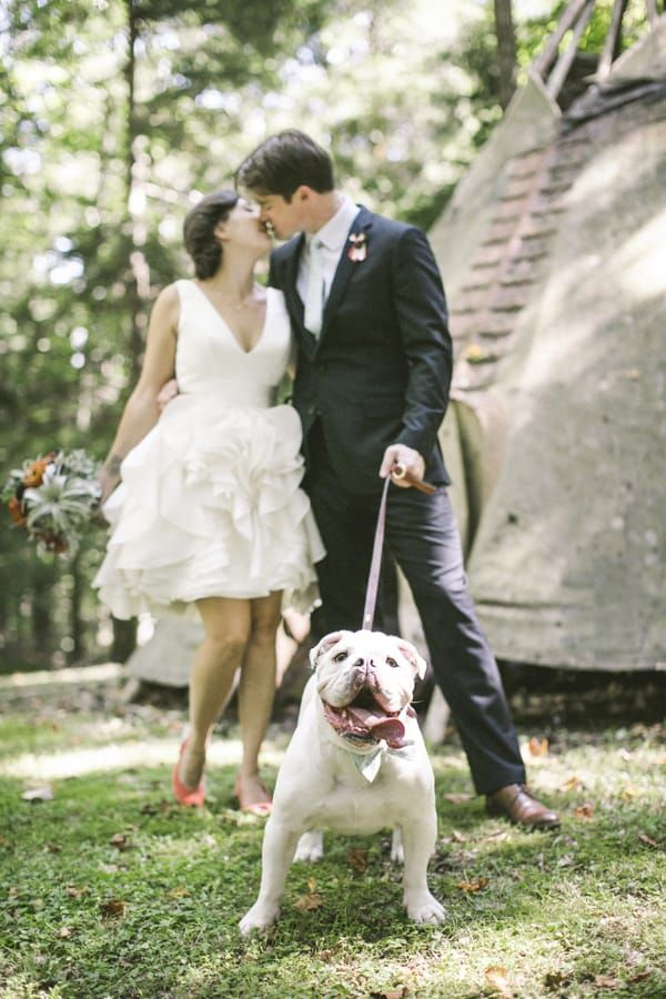 30 Dogs Who Were In The Wedding With Images Wedding Humor