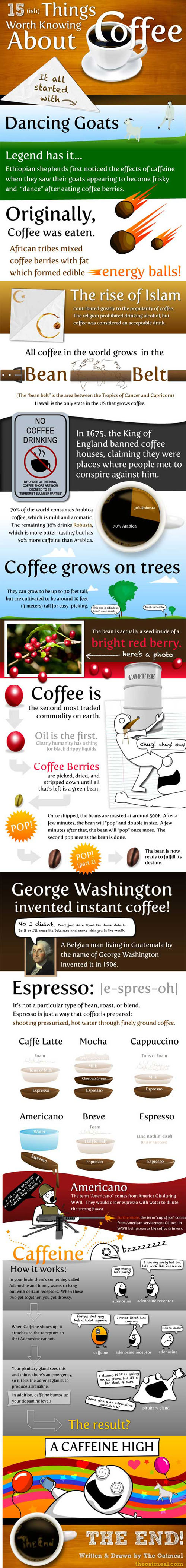 "15 things worth knowing about coffee...especially LOVE the ""Americano"" definition"
