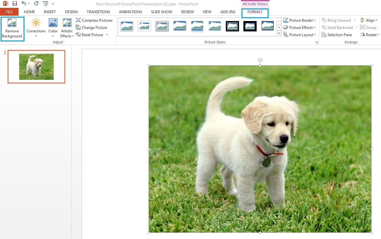 How to Remove And Change Image Background in MS PowerPoint