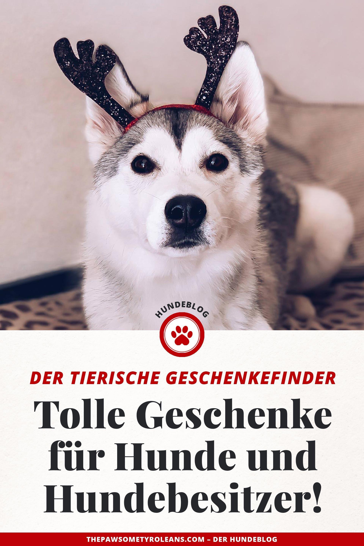 Der Tierische Geschenkefinder Tolle Weihnachtsgeschenke Fur Hunde Und Hundebesitzer The Pawsome Tyroleans Weihnachtsgeschenke Fur Hunde Hundebesitzer Hund Geschenke