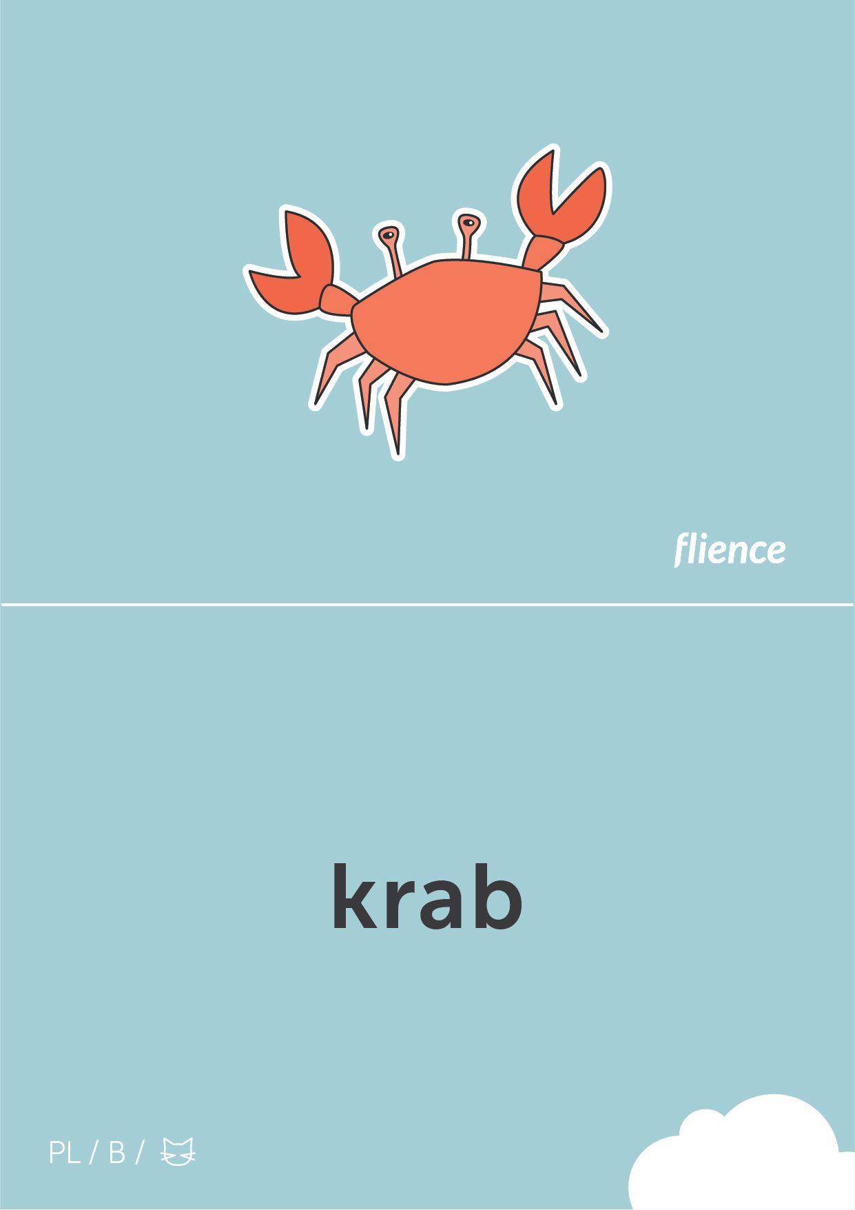 Pin By Flience On Polish Flashcards Italian Language Learning Italian French Flashcards
