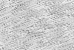 Drawing Textures How To Draw Fur How To Draw Fur Texture Drawing Animal Drawings