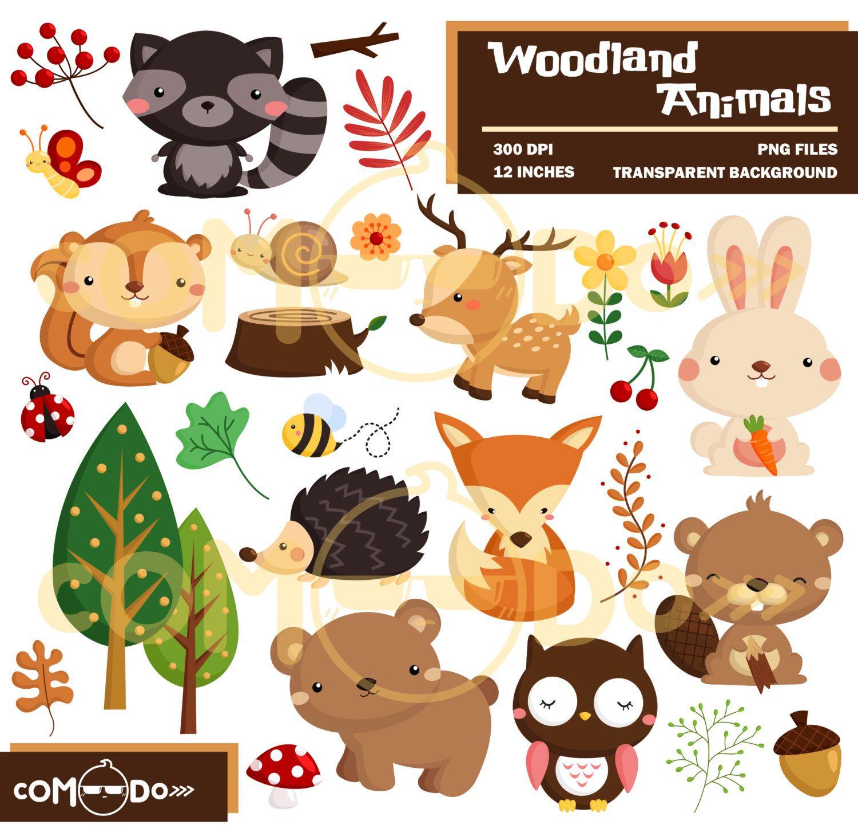 Woodland Animal Clipart Cute Forest Animal Clip Art Wild Etsy In 2021 Animal Clipart Cute Animal Clipart Woodland Animals