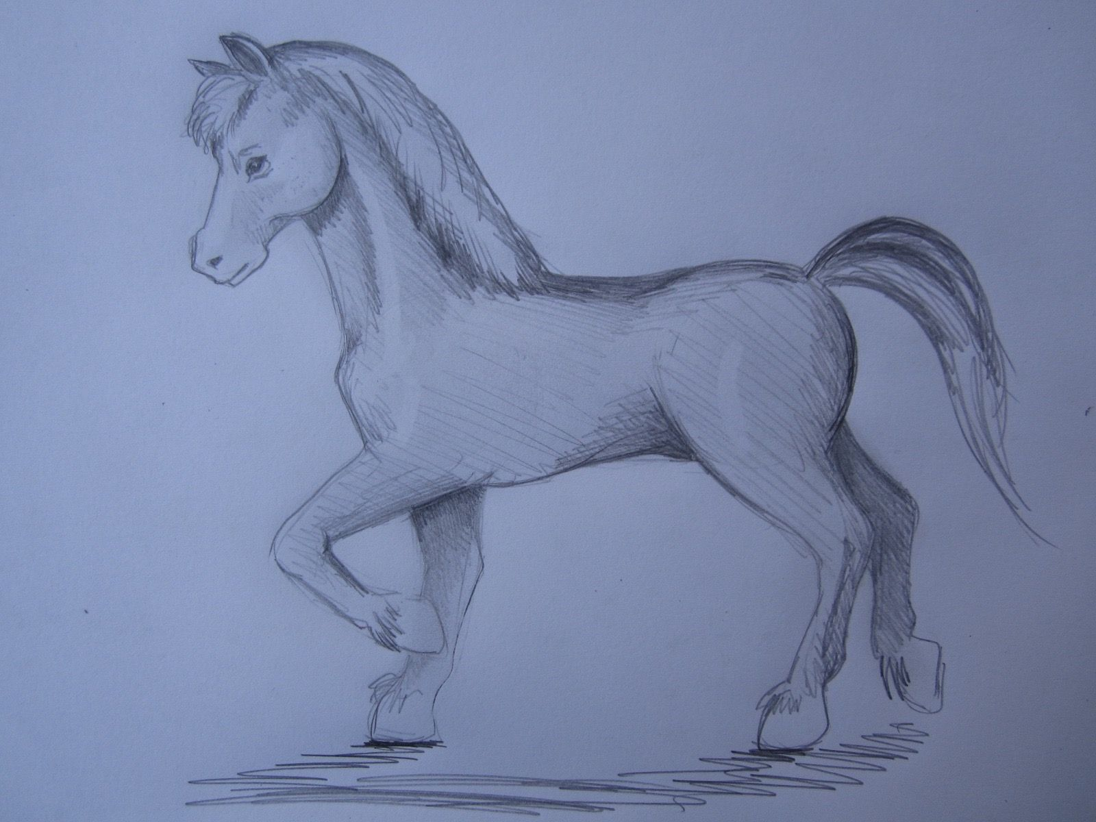 Wie Malt Man Ein Pferd Draw Anleitung Bleistift Hengst Horse