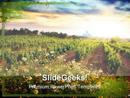 Vineyard Nature PowerPoint Templates And PowerPoint Backgrounds - nature powerpoint template