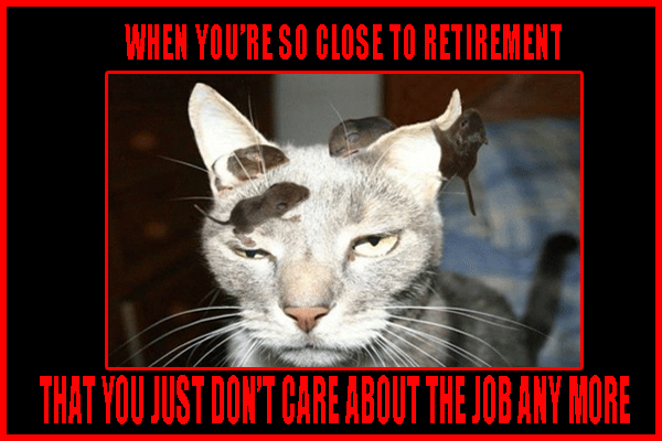 When You're So Close To Retirement Funny Meme | Funny memes, Memes,  Retirement humor