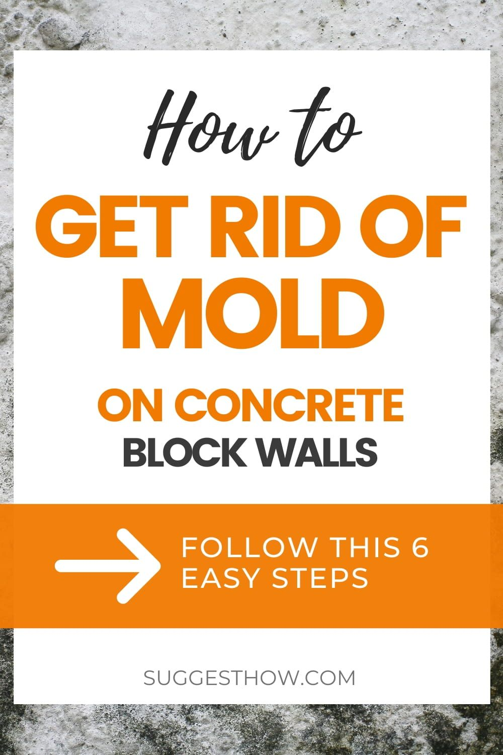 How to Get Rid of Mold on Concrete Block Walls Step by