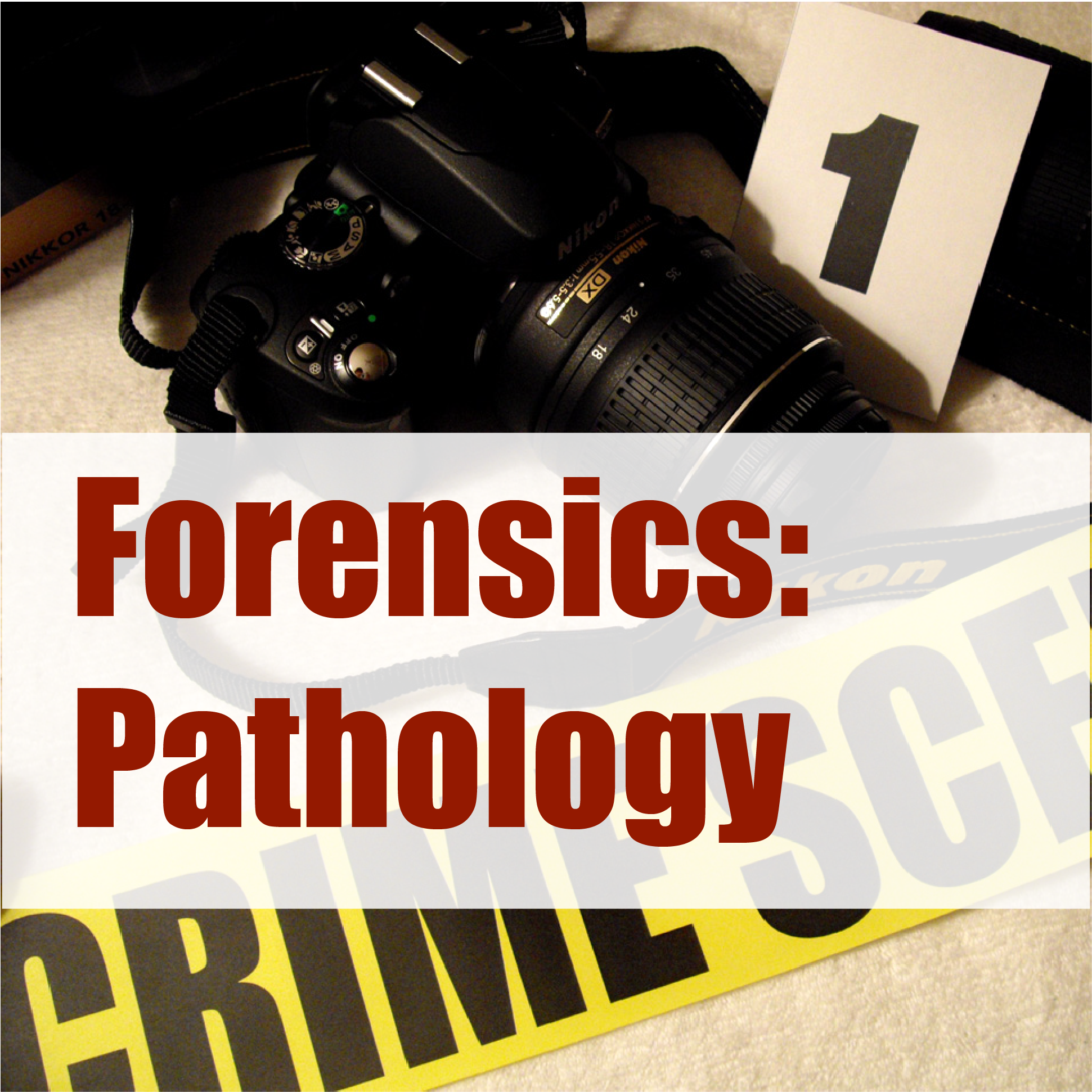 Pin by Erin Mucci on Forensics Pathology Forensics