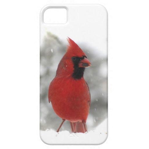 Carcasa para iPhone 5 Case-Mate  con cardenal en la nieve... [+] http://www.zazzle.es/leopardo_en_un_cojin_de_raton_de_la_mision_alfombrilla_raton-144522911330023443?CMPN=addthis&lang=es&rf=238420127640601648