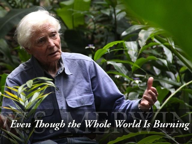 Even though the whole world is burning.... beautiful documentary on W.S. Merwin.