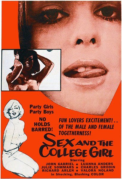 Sex And The College Girl - 1964 - Movie Poster