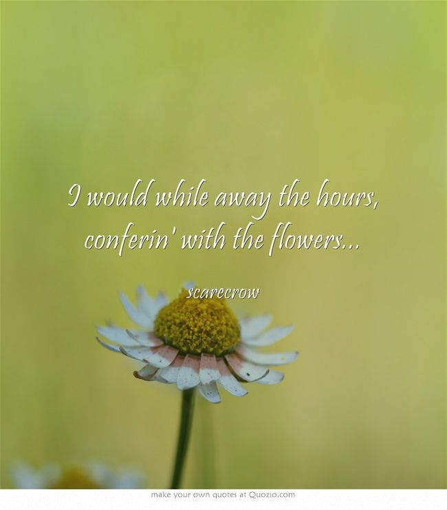 I would while away the hours, conferin' with the flowers...