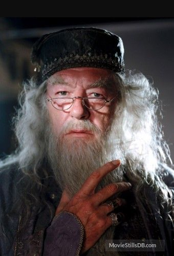 Image result for michael gambon in prisoner of azkaban