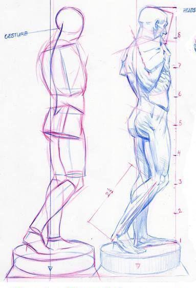 Pin de dakasme en Anatomy | Pinterest | Anatomía, Figuras humanas y ...