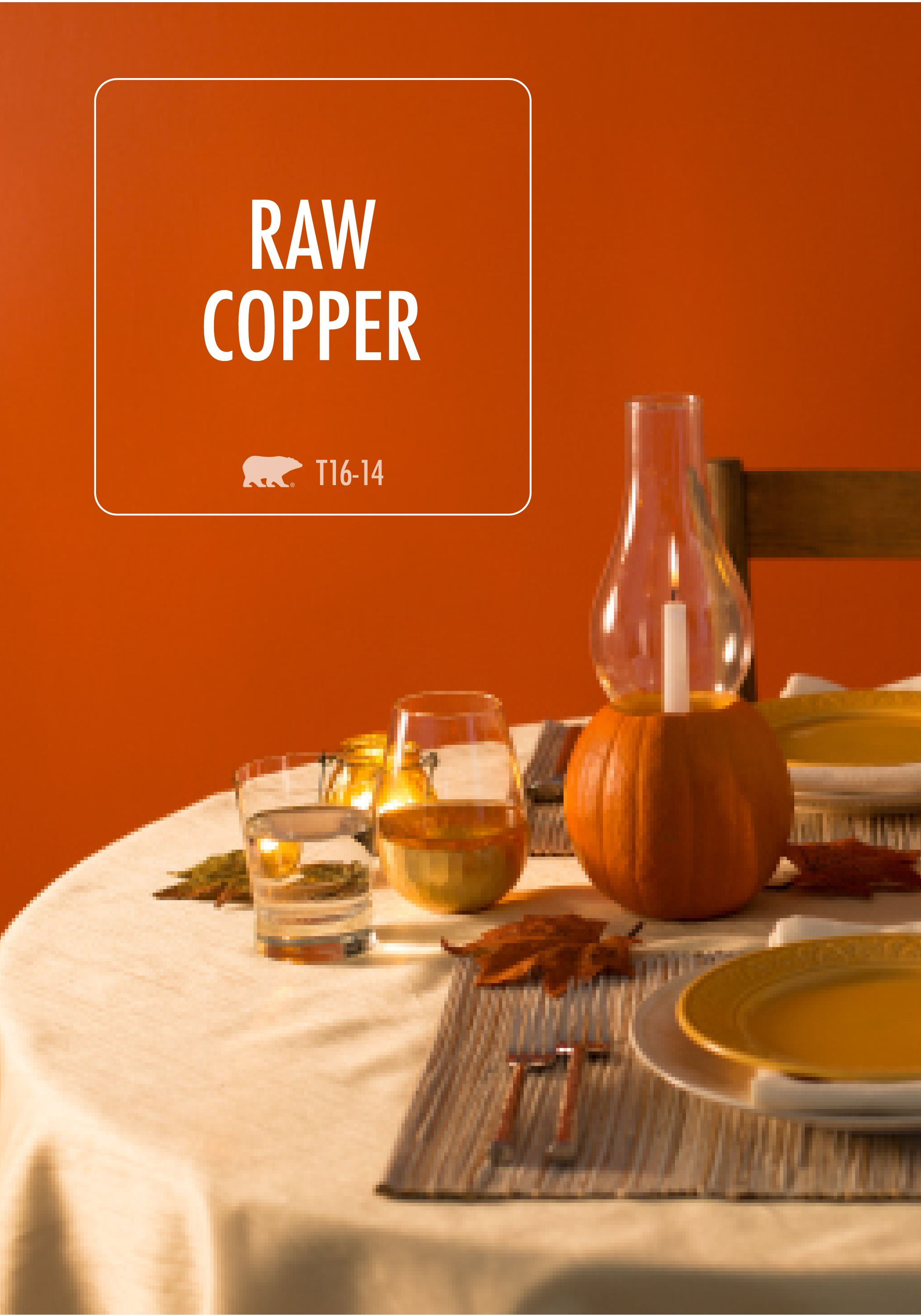 This Orange With Hints Of Earthy Red Make BEHR In Raw Copper Paint Truly One A Kind Finish Off Your Home Renovation By Choosing Cozy Shade For