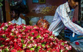 Blütenverkäufer am Devaraja Markt in Mysore