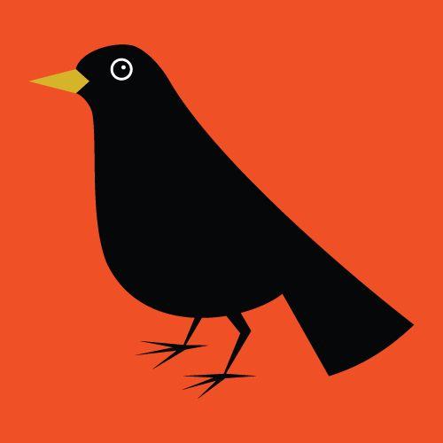 Zoë Austin Bird Print