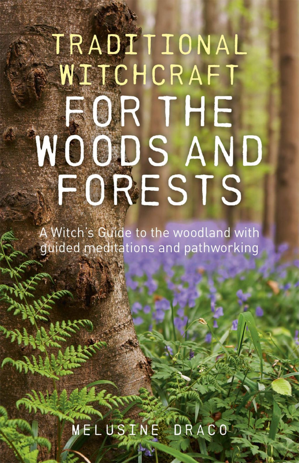 Traditional Witchcraft for the Woods and Forests: A Witch's Guide to the Woodland with Guided Meditations and Pathworking (eBook) #greenwitchcraft