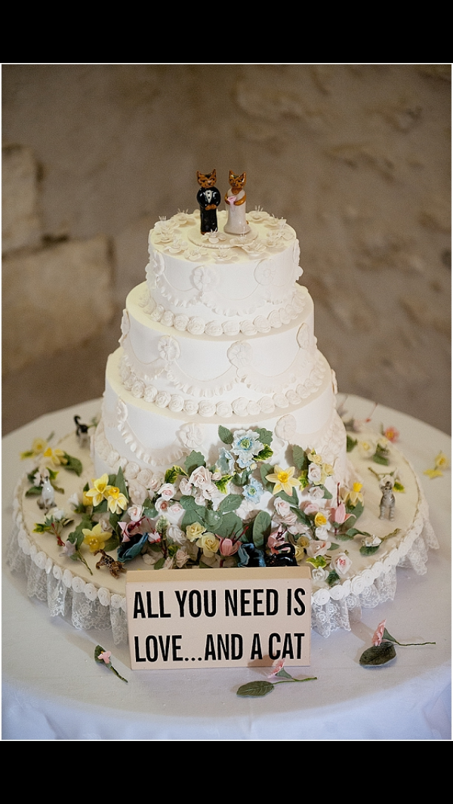Pin By Carol Wilson On Cat Wedding Cake
