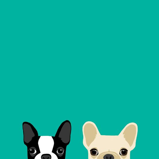 Boston Terrier French Bulldog 2 Art Print