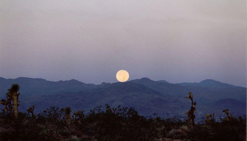Resultado de imagem para lua no deserto de mojave