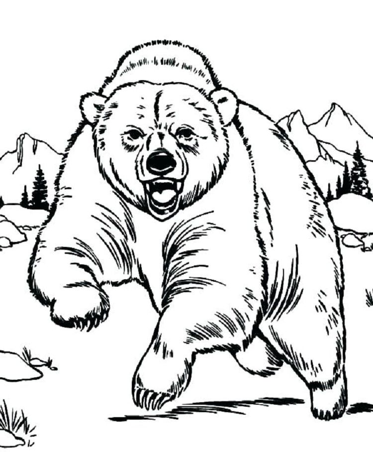 Rockies Coloring Pages