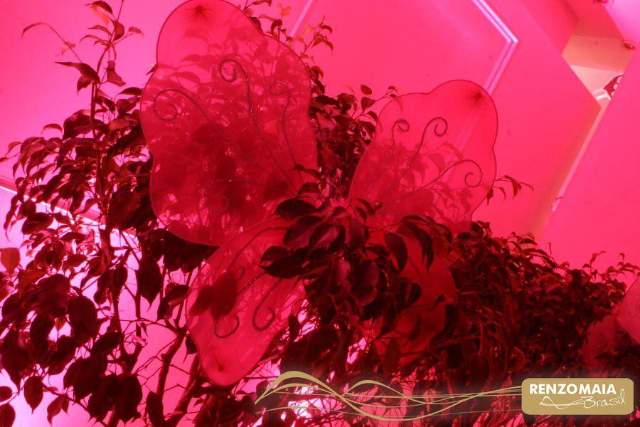 Tema: Jardim das Borboletas  Decoração: Renzo Maia Brazil   www.renzomaiabrazil.com.br