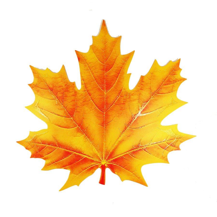 кленовий листок - Поиск в Google | Листья, Ботанические рисунки, Осенние украшения