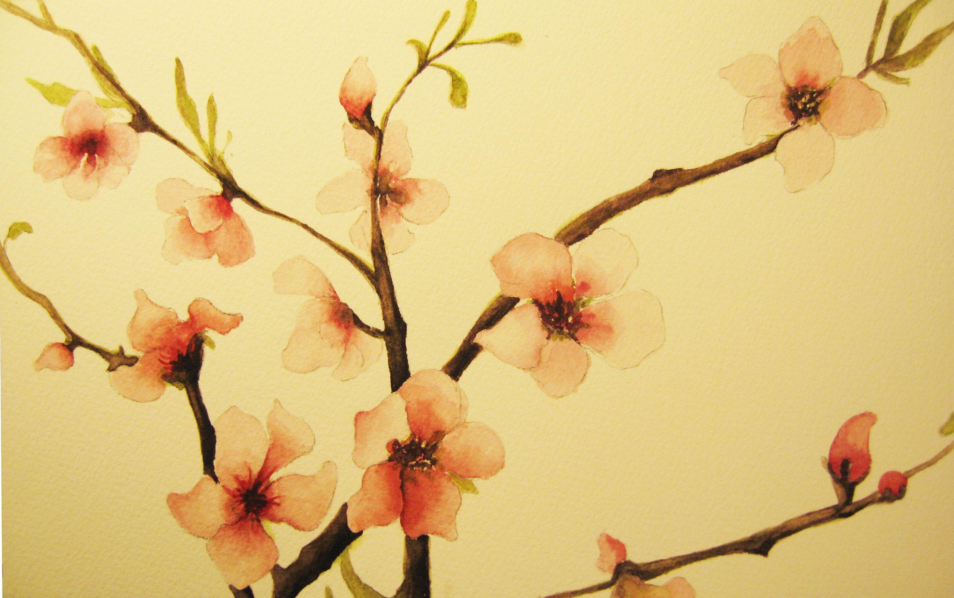 la fleur de cerisier du japon tattoo fleur de cerisier. Black Bedroom Furniture Sets. Home Design Ideas