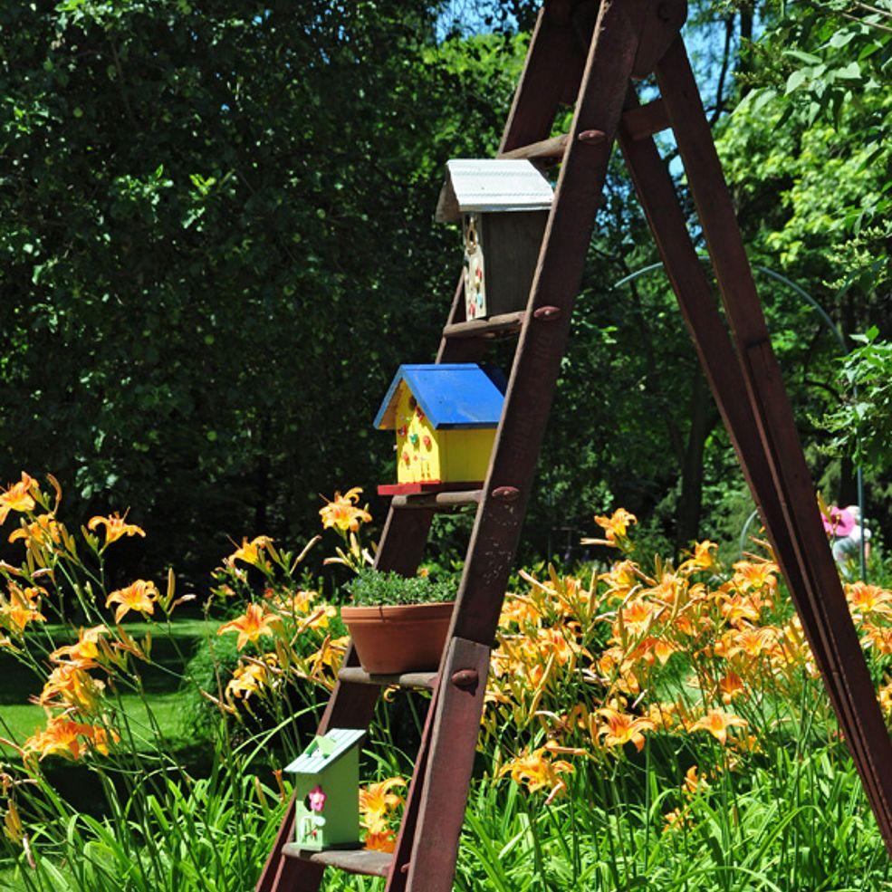 10 Great Ways to Display Birdhouses in Your Garden Bird
