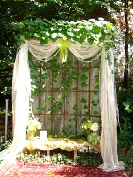 garden theme (photo op with bench/trellis/drape/greenery ...