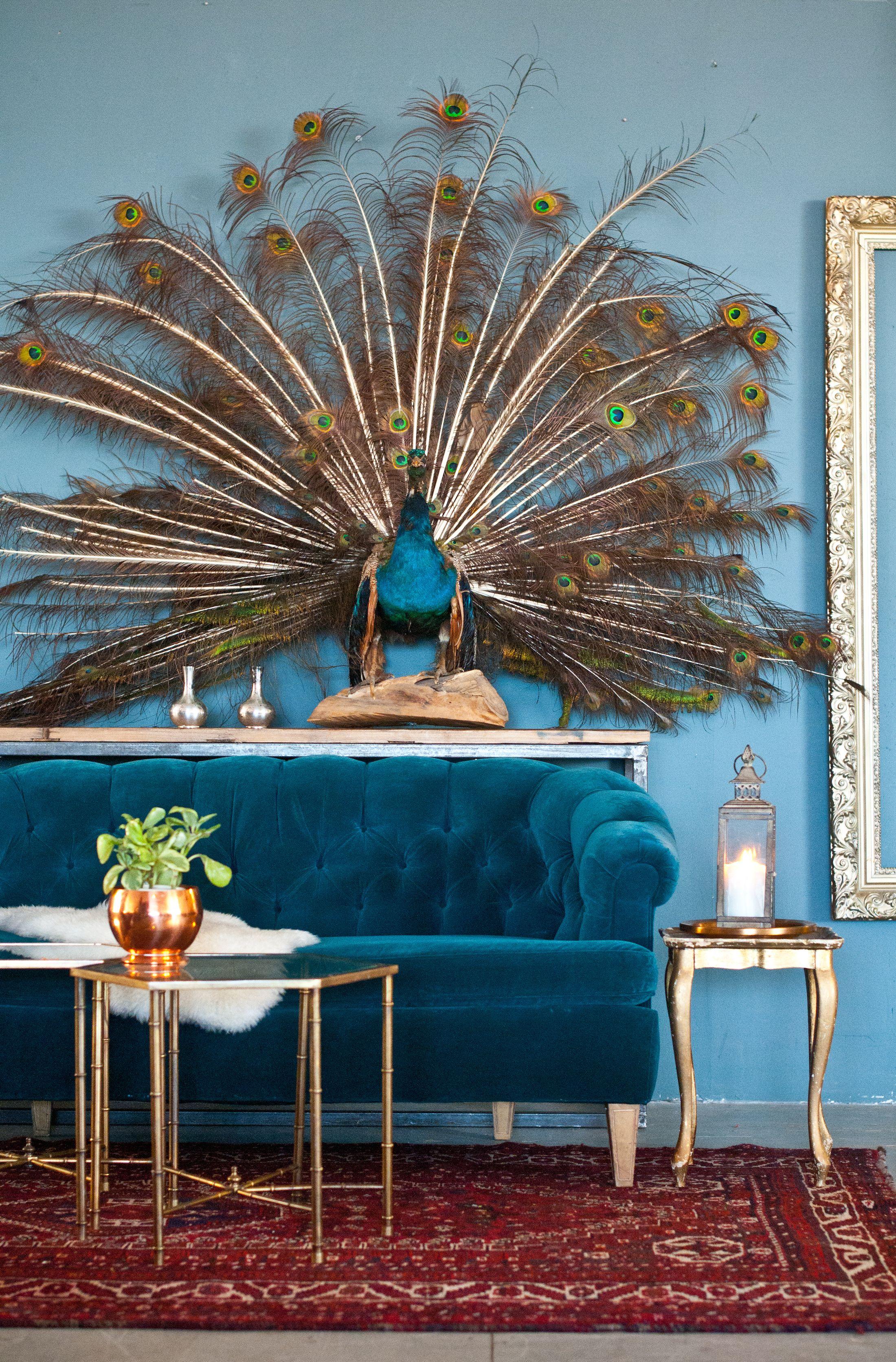 Pin On Strange Things That I Like #peacock #decor #living #room