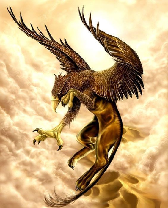 The Olympians Photo Griffin Griffin Mythical Griffin Tattoo Fantasy Beasts
