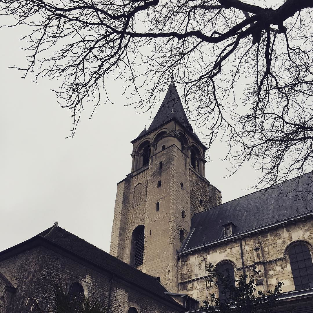 The weather is a bit melancholy today but the Abbey of Saint-Germain-des-Près still looks lovely against the gray sky  Can't wait for there to be some leaves on these branches again!  . . . #saintgermaindespres #igersparis #travelgram #theorrsgotofrance
