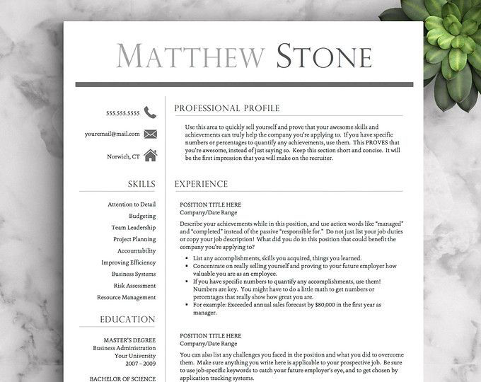 Professional Resume Template for Word \ Pages One, Two and Three - mac pages resume templates