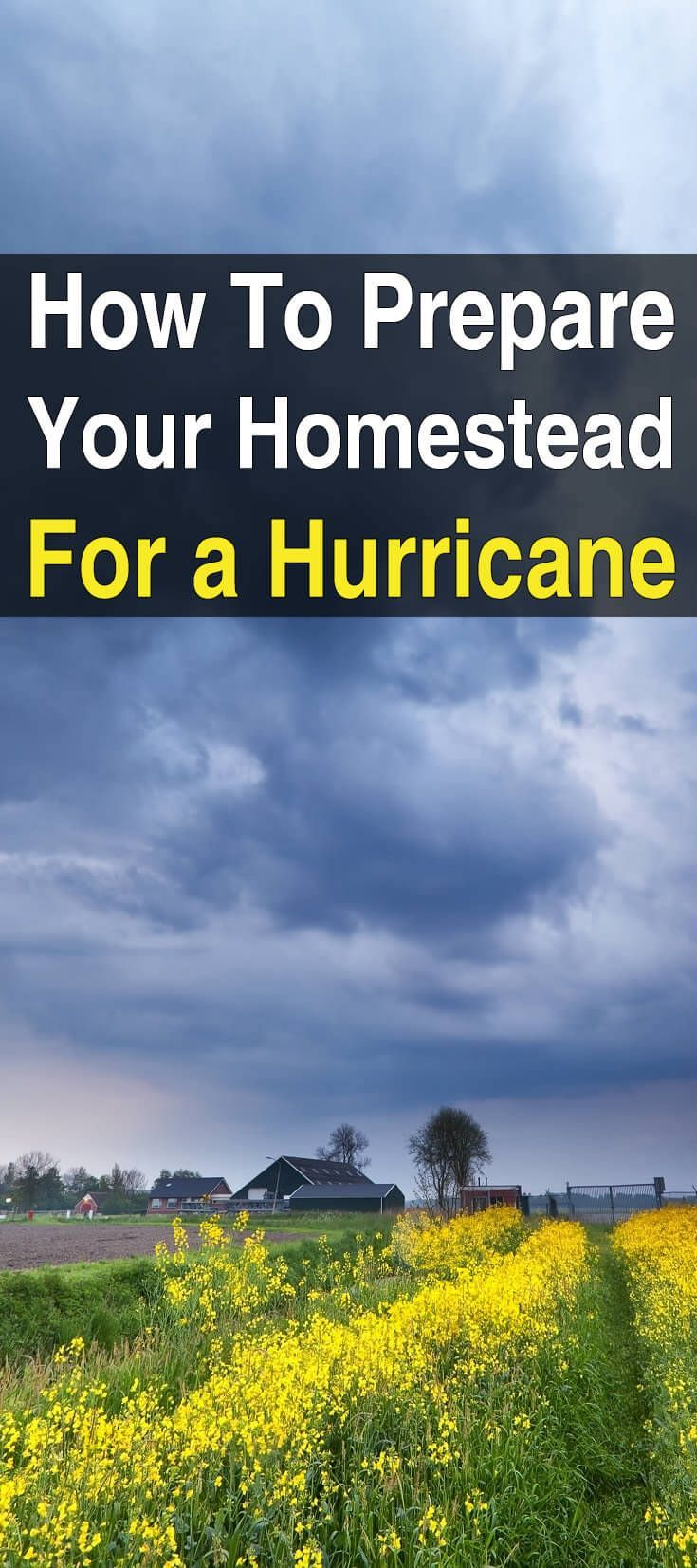 How To Prepare Your Homestead For A Hurricane With Images Homestead Survival Hurricane Preparation Homesteading