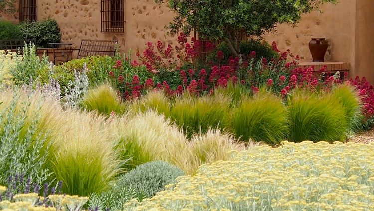 graeser garten blumen haus mediterraner stil schoen blauschwingel stipa beautiful gardens. Black Bedroom Furniture Sets. Home Design Ideas