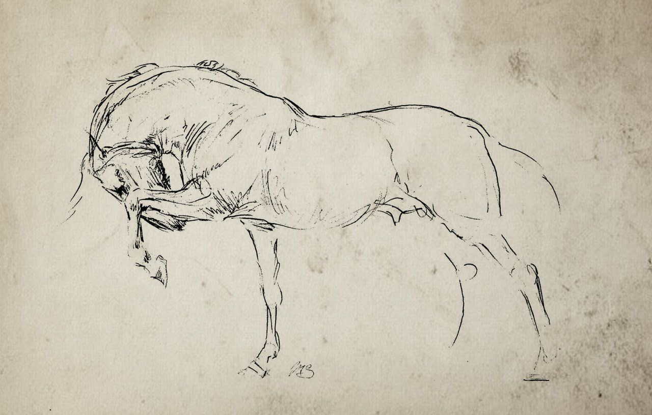 Bunbury S Bees Other Eccentricities Animal Art Horse Drawings Equine Artwork