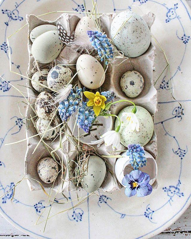 Jeg bare elsker kombinasjonenen vårblomster og egg...fineste påskepynten for meg…