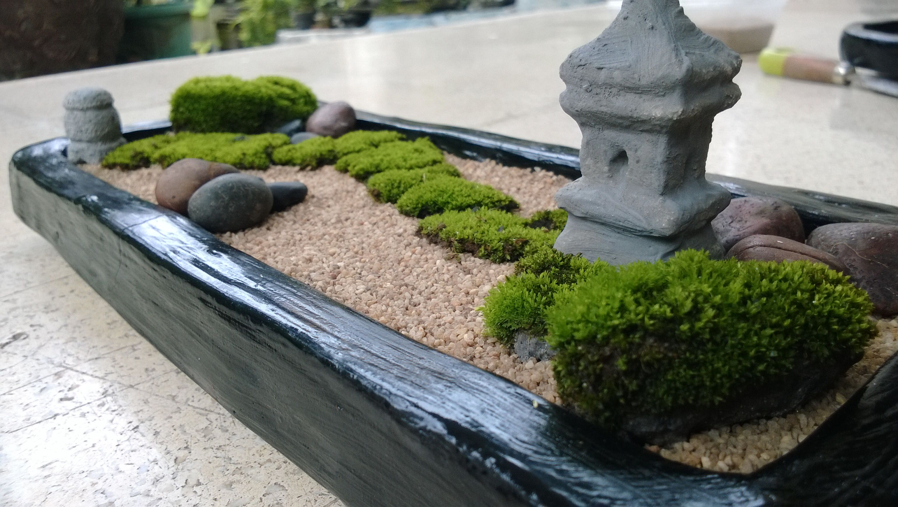diy your own mini zen garden absolutely love the moss i neeeed a zen garden craft ideas. Black Bedroom Furniture Sets. Home Design Ideas