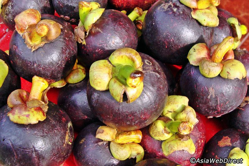 10 Great Balinese Fruits Top 10 Tropical Fruits To Try In Bali
