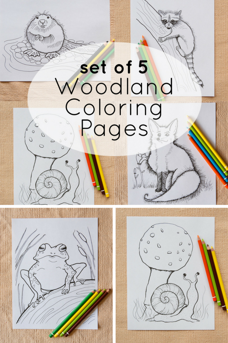 Set Of 5 Woodland Animal Coloring Page Printables Explore The Woods And Bring Sweet