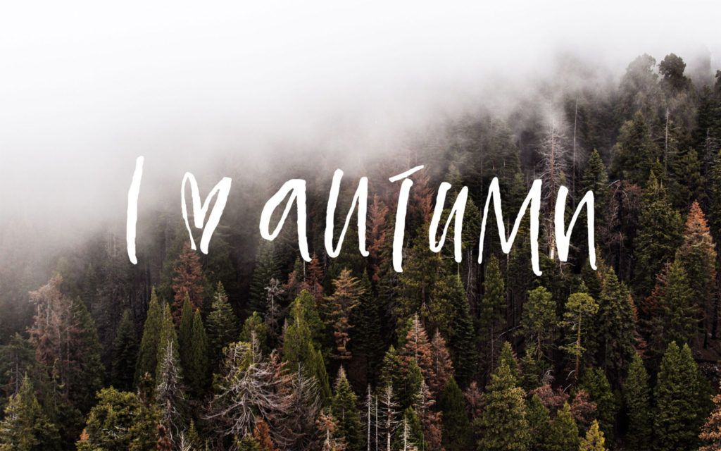 Looking For For Ideas For Background Browse Around This Website For Aesthetic Backg Desktop Wallpaper Fall Aesthetic Desktop Wallpaper Fall Desktop Backgrounds