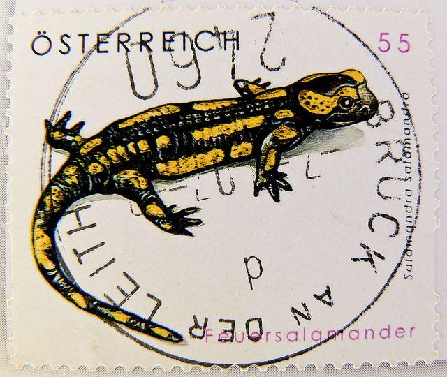 Salamander .55¢ stamp, Austria