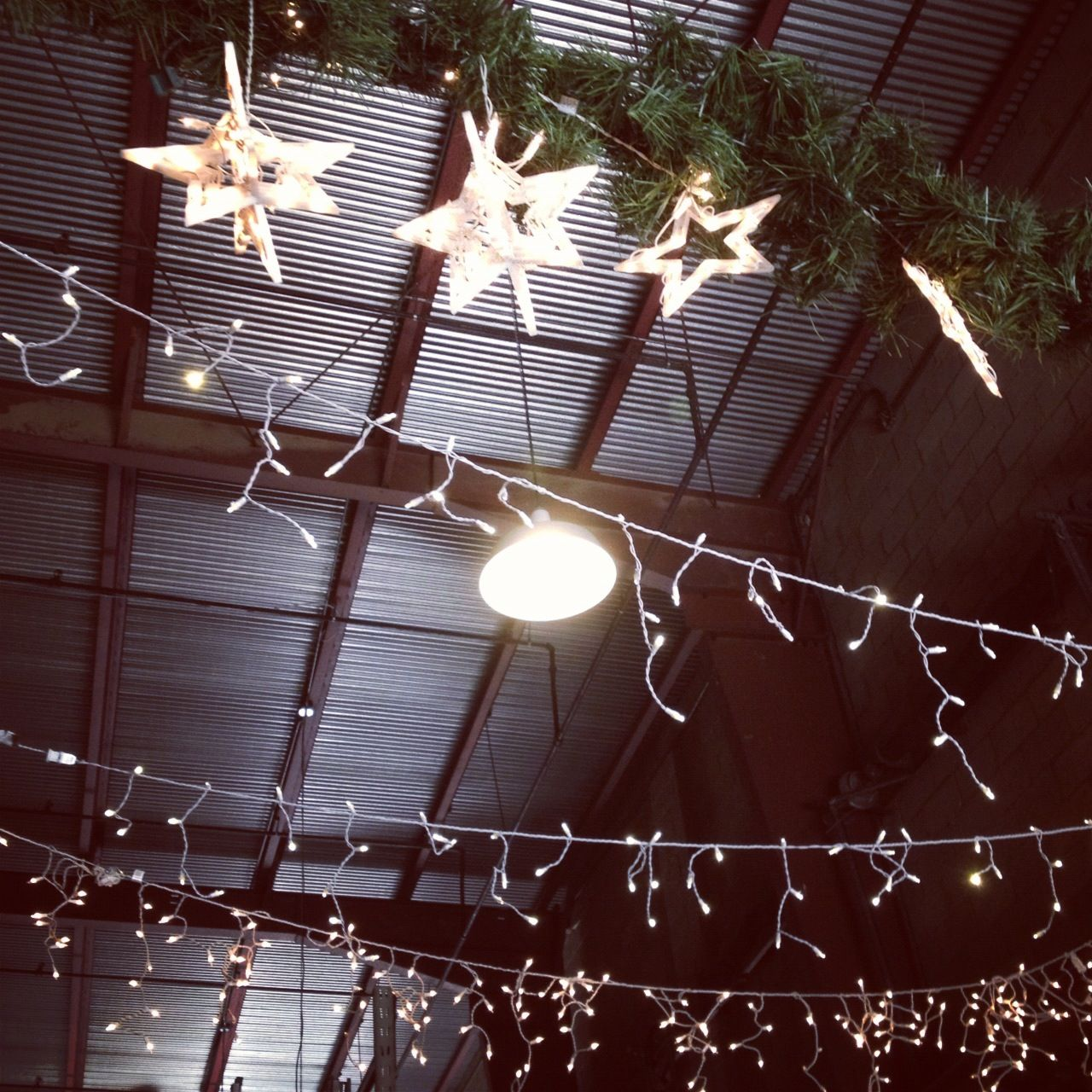 Holiday/ceiling Lights